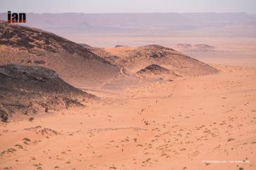 desert pana2