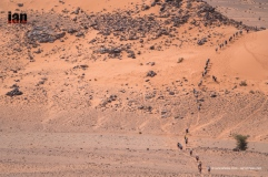 up dune